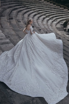 Elegant Long Sleeves Ball Wedding Dresses | 2020 Lace Sexy Bridal Gowns_3