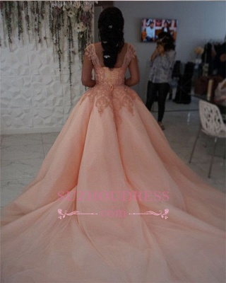 Newest Chic Long Cap-Sleeves Ball-Gown Scoop Lace-Appliques Quinceanera Dresses_3