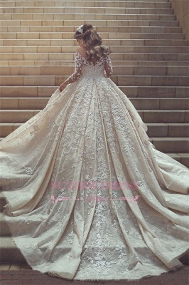 Gorgeous Crystal Appliques Wedding Dress 2020 Tulle Long Sleeves Bridal Gowns_2