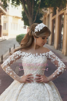 Gorgeous Crystal Appliques Wedding Dress 2020 Tulle Long Sleeves Bridal Gowns_4
