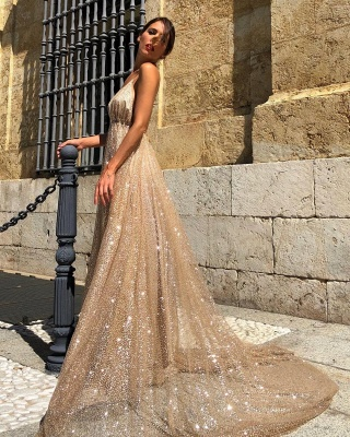 Champagne Sequins Backless Prom Dresses | 2020 Spaghetti Straps A-Line Evening Dresses Online_5